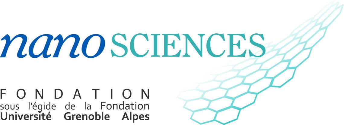 Fondation Nanoscience